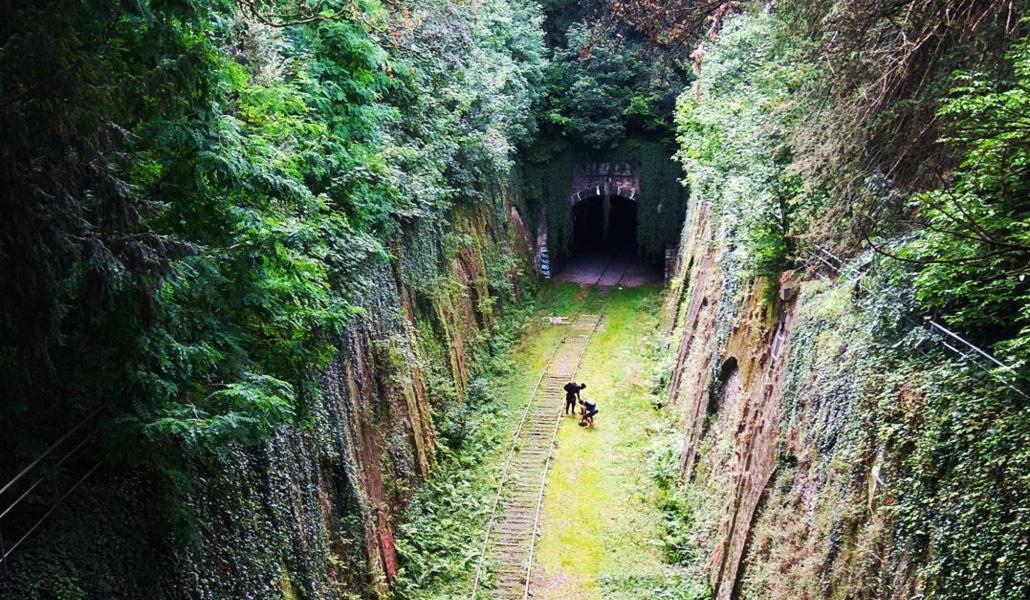 8d09cdeb0c9f La Petite Ceinture   une promenade à toutes les extrêmes - Paris Secret